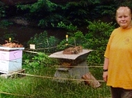 Lynda Fogarty, Bee Steward & Animal Communicator, natick, ma, instructor